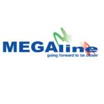 Приладдя для чищення зброї Mega Line